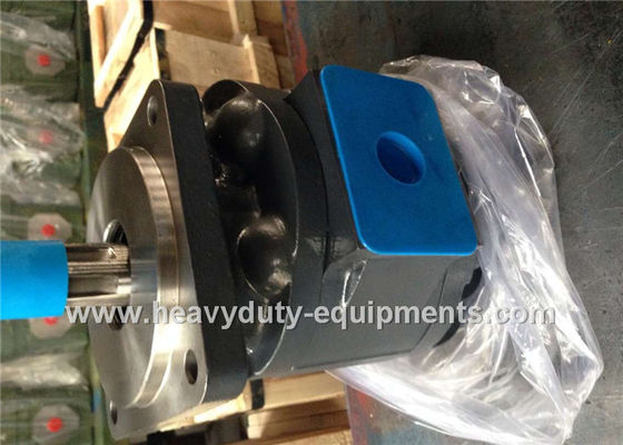 China Engineering Construction Equipment Spare Parts Industrial Hydraulic Pumps LW280 WZ3025 51 Shaft Extension supplier